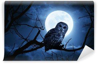 Vinyl-Fototapete Owl Uhren Konzentriert bei Vollmond beleuchtet der Halloween-Nacht