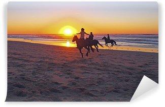 Vinyl-Fototapete Reiten am Strand bei Sonnenuntergang