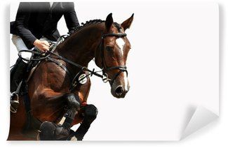Vinyl-Fototapete Reitsport, Pferdesport, Reiten, Springreiten, Hürdenspringen