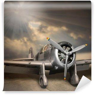 Vinyl-Fototapete Retro-Stil Bild des Flugzeugs.