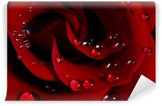 Vinyl-Fototapete Rose mit Wassertropfen /