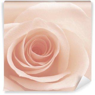 Vinyl-Fototapete Rosé