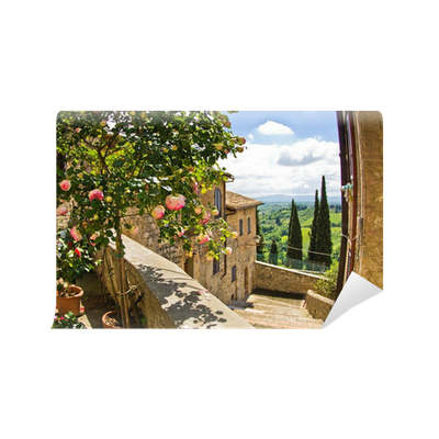fototapete rosen auf dem balkon in san gimignano toskana landschaft hintergrund pixers wir. Black Bedroom Furniture Sets. Home Design Ideas