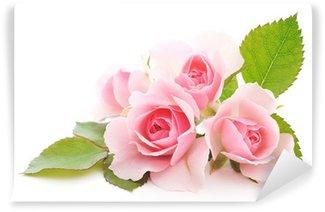 Vinyl-Fototapete Rosen rosa