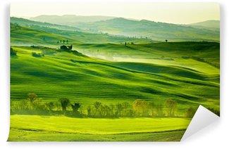 Vinyl-Fototapete Saftig grüne Wiesen in der Toskana