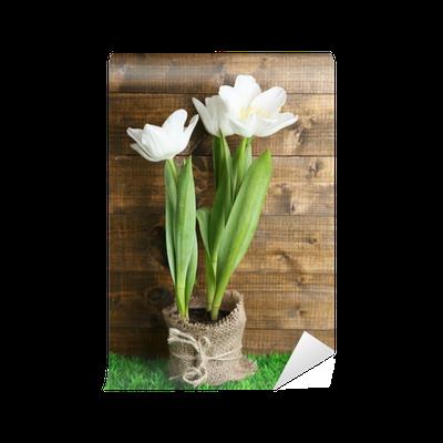 fototapete sch ne tulpen im topf auf gr nem gras auf. Black Bedroom Furniture Sets. Home Design Ideas