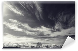 Vinyl Fototapete Schwarz-Weiß-Foto der Herbstlandschaft