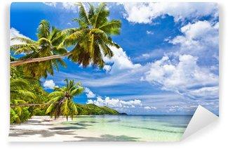 Vinyl Fototapete Seychelles coconut