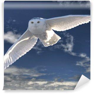 Vinyl-Fototapete Snowy Owl in Flight