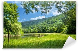 Vinyl Fototapete Sommer Landschaft mit Fluss und blauer Himmel