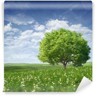 Vinyl Fototapete Sommerlandschaft mit grünen Baum