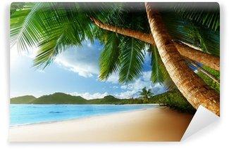Vinyl Fototapete Sonnenuntergang am Strand, Mahe Island, Seychellen
