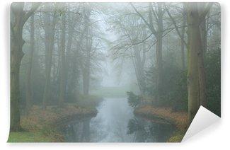 Vinyl-Fototapete Teich in einem Landschaftspark an einem nebligen Frühlingstag.