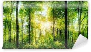 Vinyl-Fototapete Waldpanorama im Sonnenschein