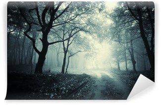 Vinyl-Fototapete Weg durch den dunklen Wald