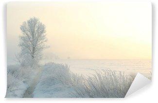 Vinyl-Fototapete Winterlandschaft an einem nebligen Morgen