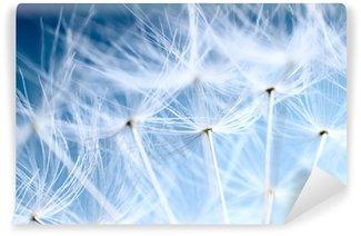 Vinyl-Fototapete Zarte Pusteblumen mit blauem Hintergrund