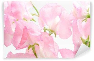 Fototapet av Vinyl ピ ン ク の ス イ ー ト ピ ー の 切 り 花