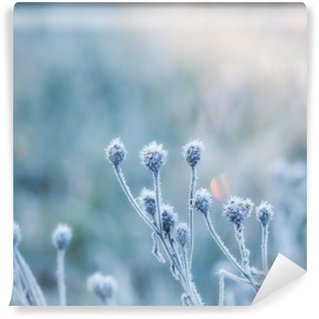 Fototapet av Vinyl Abstrakt naturlig bakgrund från fryst växt täckt med rimfrost eller rimfrost