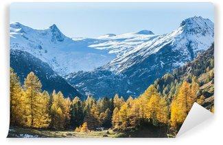 Fototapet av Vinyl Alp dal