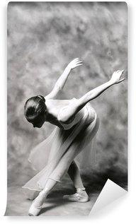 Fototapet av Vinyl Ballerina 2