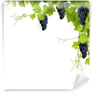 Fototapet av Vinyl Collage av vinblad och blå druvor