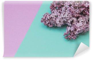 Fototapet av Vinyl Flat låg elegant uppsättning: Lila blommor på pastellfärgad bakgrund. Toppvy.