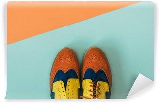 Fototapet av Vinyl Flat låg mode set: färgade vintage skor på färgad bakgrund. Toppvy.