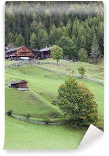 Fototapet av Vinyl Gamla alp gård