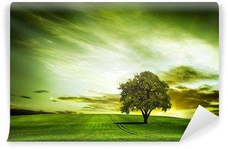 Fototapet av Vinyl Grön natur