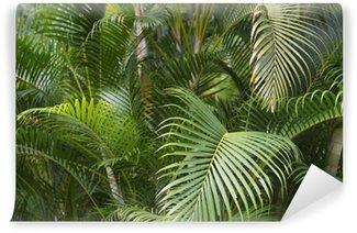 Fototapet av Vinyl Grön tropisk palmblad Jungle