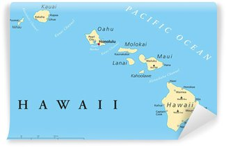 Fototapet av Vinyl Hawaii Political Map