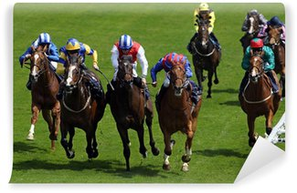 Fototapet av Vinyl Horse Racing 5