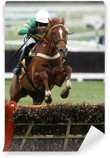 Fototapet av Vinyl Horse Racing Jump