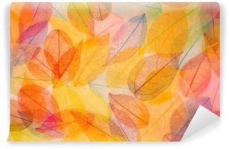 Fototapet av Vinyl Hösten bakgrund
