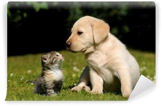 Fototapet av Vinyl Hund och katt