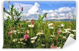 Fototapet av Vinyl Inbjudan att slappna av: Colorful sommar blomsteräng