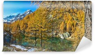 Fototapet av Vinyl Lake of the häxor (blå sjön) Alp Devero