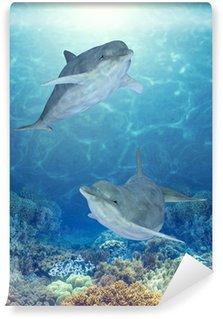 Fototapet av Vinyl Lyckliga delfiner