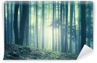 Fototapet av Vinyl Magiska blågröna mättad dimmigt skogsträd landskap. Färgfilter effekt används. Bilden är tagen i sydöstra Slovenien, Europa.
