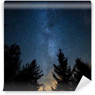 Fototapet av Vinyl Melkeveien over skogen