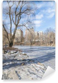 Fototapet av Vinyl Parco New York
