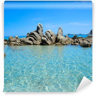 Fototapet av Vinyl Sardinien hav