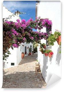 Fototapet av Vinyl Smala kullerstensgator och hus av spanska pueblo