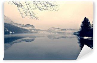 Fototapet av Vinyl Snøhvit landskap på sjøen i svart og hvitt. Monokrom bilde filtrert i retro, vintage stil med mykt fokus, rødt filter og litt støy; nostalgisk vinterbegrep. Lake Bohinj, Slovenia.