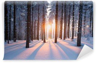 Fototapet av Vinyl Solnedgång i trä i vintern