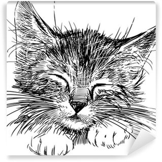 Fototapet av Vinyl Sovande katt