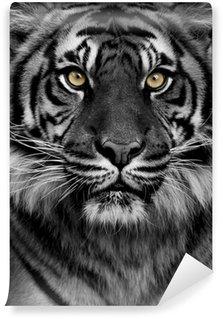 Fototapet av Vinyl Tiger ögon