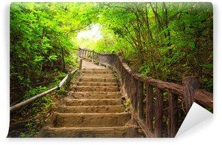 Trappe til skov, Kanchanburi, Thailand Vinyl Fototapet