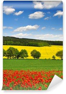 Fototapet av Vinyl Våren landskap med röda vallmofält i Tjeckien